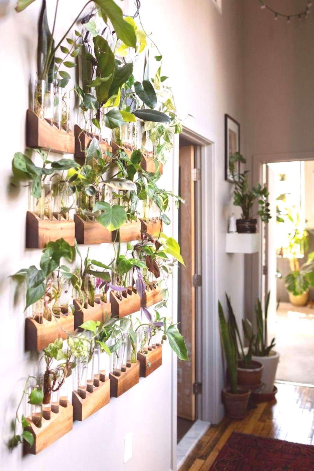 The Plant Doctors home tour is definitely full of plants and tons of unique ideas for dis