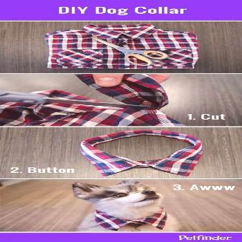 43+ super Ideas for diy dog accessories collars