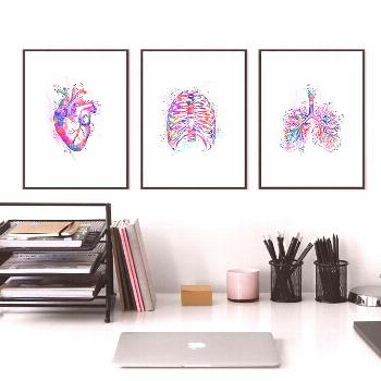 Anatomy Human Heart Brain Canvas Poster Print Neurology Medicine Art Watet color Painting Student G