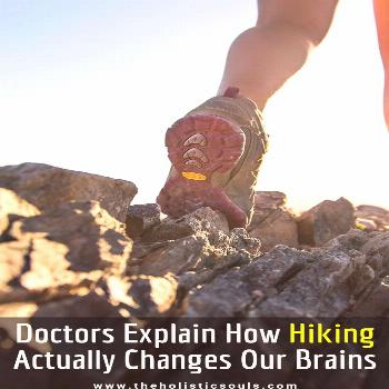 Doctors Explain How Hiking Actually Changes Our Brains - Organic Recipes Doctors Explain How Hiking