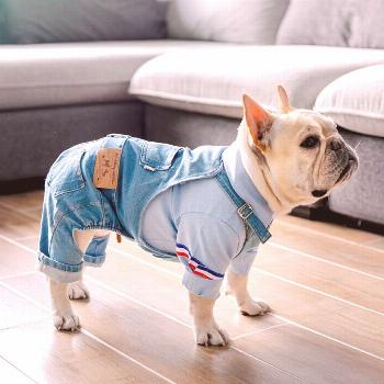 Dog Denim Jumpsuit for French Bulldog or Pug  Price: $20.82 & FREE Shipping
