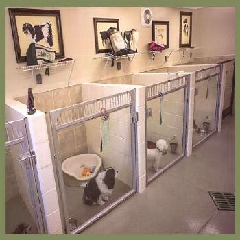 How To Choose A Dog Crate | Dog Kennel Designs | Dog Crate Furniture Two | Dog Crate Furnitur...