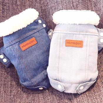 Luxury Winter Dog Jacket Your pup will look cute in this denim jacket this winter.