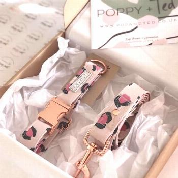Poppy + Ted (Poppy and Ted) - Unique Handmade Dog Collars, Accessories, Leads, Harnesses and more.