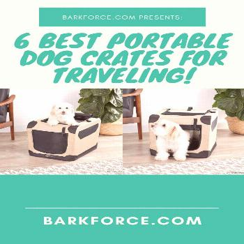 Shopping Guide: 6 Best Portable Dog Crates for Traveling. Find Out In This Article. Crates For Dogs