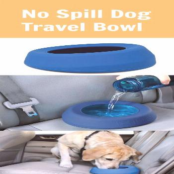 We all know that it is important to keep your dog hydrated while on the road, but sometimes it's
