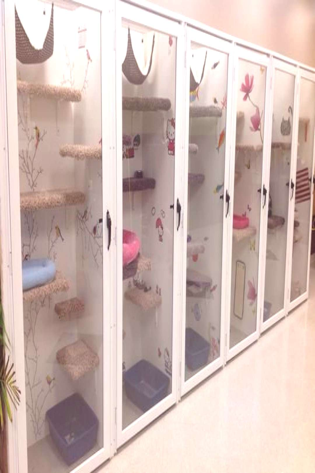 cat boarding cages - Google Search
