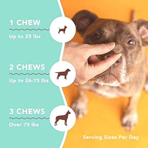Natural Dog Company Skin amp Coat Supplement Chews with Wild