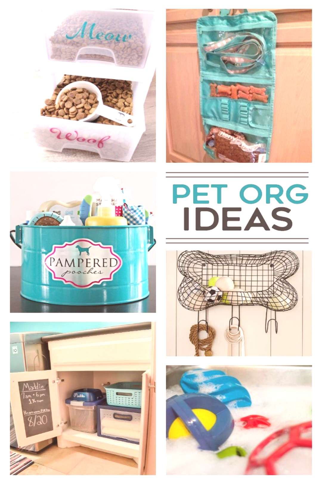 Organic Dogs Accessories Pictures