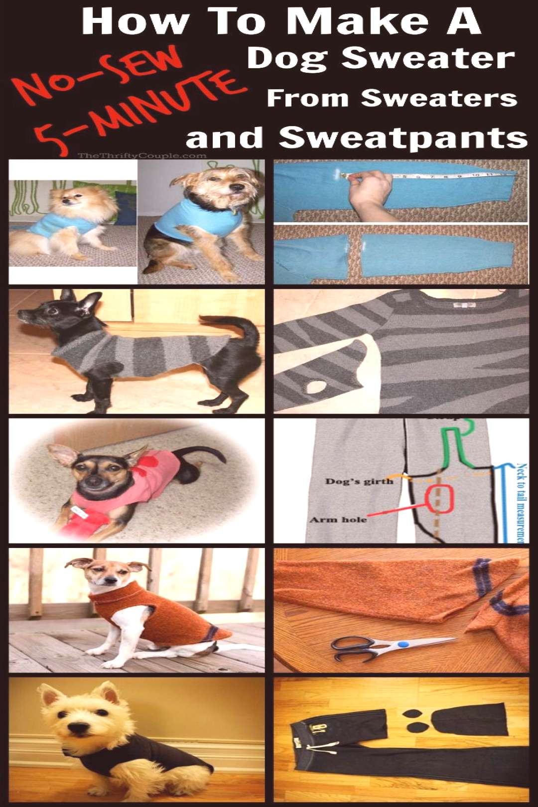 This is AWESOME! Learn how to make a no-sew dog sweater or pet sweater from a sleeve or pant leg fr
